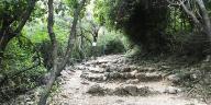 trails of Margalla Hills